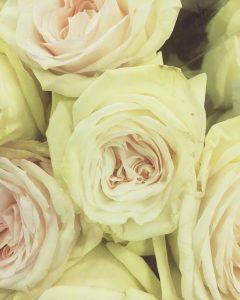 I love flower shopping but I always wonder if theirhellip
